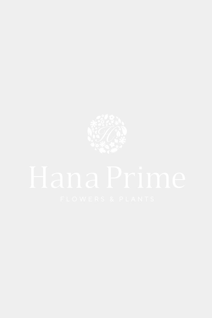 花束 ローズブーケ国産バラ 50本 #750 size:140